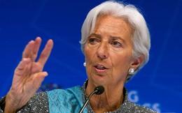 Tổng giám đốc Quỹ Tiền tệ Quốc tế nộp đơn từ chức