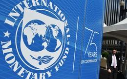 IMF nhận thấy những nguy hiểm từ đồng USD được định giá quá cao