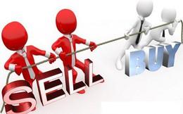 GMD, KDH, CMG, BII, L61: Thông tin giao dịch lượng lớn cổ phiếu