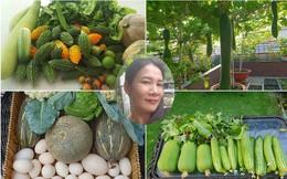 """Sở hữu sân thượng rộng đến 200m², mẹ đảm ở Sài Gòn khiến nhiều người bất ngờ với """"trang trại"""" rau quả tự trồng"""