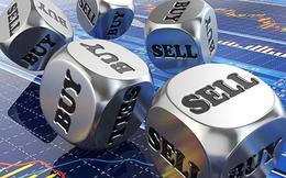 CTD, SHI, VPB, NLG, PNJ, MPT, HNF, NPS, GSM, NDC, MAC, BMF, GTS: Thông tin giao dịch lượng lớn cổ phiếu