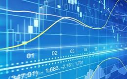 PDR, TDM, CTF, HAH, SFI, HMH, BED, TLI, CTW, VE1: Thông tin giao dịch lượng lớn cổ phiếu
