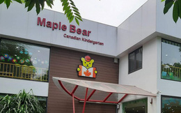 Thu học phí tới 20 triệu/tháng, hệ thống trường Maple Bear đang hoạt động thế nào?