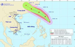 Bão Bailu giật cấp 11 đang hoạt động gần Biển Đông
