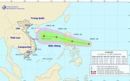 Áp thấp nhiệt đới khả năng mạnh thành bão