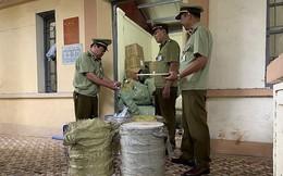 Thu giữ 116 kg nguyên liệu chè trân châu do Trung Quốc sản xuất