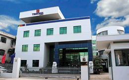 TID giảm 24% trong 2 tháng, Đầu tư Thành Thành Công vẫn muốn bán 5 triệu cổ phiếu