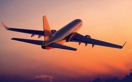 Nhiều chuyến bay đi Đài Bắc bị ngừng khai thác do ảnh hưởng của bão Lekima