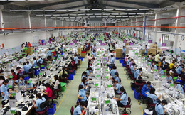 Khen giá nhân công rẻ, doanh nghiệp Nhật đặt nhà máy tại Việt Nam, công suất lớn hơn nhà máy ở Trung Quốc
