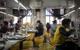 Thêm tín hiệu xấu cho kinh tế Trung Quốc: Chỉ số giá sản xuất giảm sâu