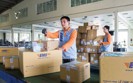 Chuyển phát nhanh bưu điện (EMS) bị truy thu và phạt hơn 1 tỷ đồng tiền thuế