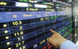 Tranh thủ giá cổ phiếu giảm sâu, em trai Tổng giám đốc C71 đăng ký mua 1 triệu cổ phiếu