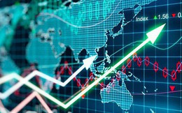 HPG, KDH, CII, NTP, YEG, ANV, BWE, OCH, CMS, NTL, GSM: Thông tin giao dịch lượng lớn cổ phiếu