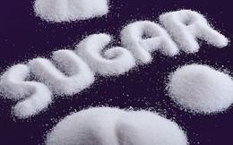 """TTC Sugar (SBT) chỉ bán được nửa số lượng cổ phiếu ưu đãi cổ tức do """"tổ chức tài chính tên tuổi châu Âu"""" DEG mua ít hơn dự kiến"""