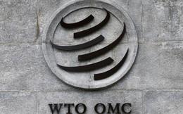 Bị áp thuế, Trung Quốc kiện Mỹ lên WTO