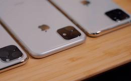"""Năm nay có iPhone 11 và iPhone 11 Pro, vậy iPhone XR năm ngoái sẽ """"khăn gói"""" mất hút về đâu?"""