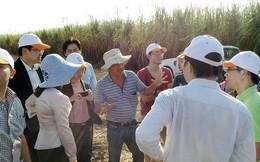 Doanh nhân Việt đầu tư ra nước ngoài: Khó ở đâu?