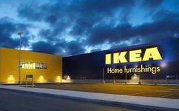 Vì sao phải mất tới 4 năm thăm dò, IKEA mới cân nhắc đầu tư 450 triệu Euro vào Việt Nam?