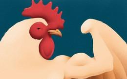 Vì sao người giàu trên thế giới ngày một thích ăn thịt gà?