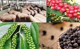Xuất khẩu rau quả, gạo, thịt heo sang Trung Quốc dự báo gặp khó trong năm 2019
