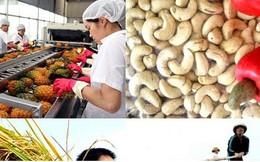 Xóa bỏ 86% dòng thuế nhập khẩu của Việt Nam vào Nhật Bản