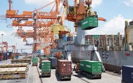 Việt Nam ước nhập siêu 800 triệu USD trong tháng 1/2019