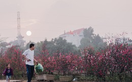 Chùm ảnh: Hà Nội 27 Tết đẹp dịu dàng, mộc mạc và ấp áp trong nắng Xuân sớm