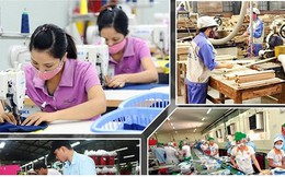 Doanh nghiệp thành lập mới ngày càng lớn về quy mô vốn