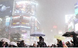 Nhật Bản chìm trong giá lạnh khắc nghiệt, 100 chuyến bay bị hủy