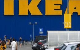 IKEA dính phốt lớn: Bán bản đồ thế giới 'quên' New Zealand khiến gần 5 triệu dân nước này nổi giận