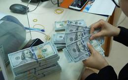 Doanh nghiệp Việt đầu tư 1,25 triệu USD ra nước ngoài trong tháng 1/2019