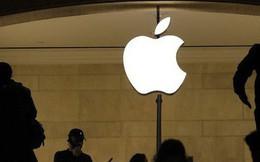Trong khi Apple gặp khó khăn và giá cổ phiếu lao dốc, một cựu giám đốc âm thầm đút túi hàng trăm nghìn USD