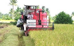 Vựa lúa gạo của cả nước chờ được 'giải cứu'