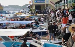 Thống nhất giá tour đảo vịnh Nha Trang là 250.000 đồng/khách