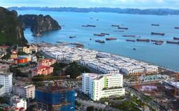 Giá bất động sản Quảng Ninh dự báo sẽ tăng mạnh