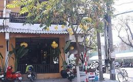 'Đường đi' của những cơ sở nhà đất sai phạm ở Đà Nẵng