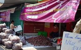 """Lập chiến dịch """"giải cứu"""" khoai lang giúp nông dân Gia Lai"""