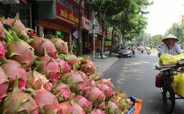 Trung Quốc siết đường tiểu ngạch, lo rau quả bí đầu ra