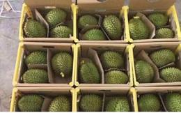 Ùn ứ nông sản không thuộc danh mục xuất khẩu chính ngạch tại Lạng Sơn