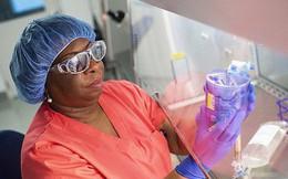 Đột phá: Tiêm virus HIV trị căn bệnh không thuốc chữa