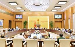 Điều động, phê chuẩn nhân sự Ủy ban Thường vụ Quốc hội