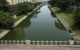 Hà Nội: Sông Tô Lịch giảm mùi, nước chuyển màu xanh