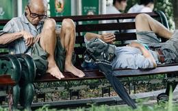 """Ảnh: Hà Nội nắng nóng """"cháy da cháy thịt"""", nhiều người không khỏi mệt mỏi tìm bóng cây nghỉ ngơi"""