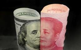 Mỹ không lên lịch gặp Trung Quốc, hỗ trợ 16 tỷ USD cứu nông dân