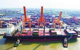 """Ứng dụng mô hình """"cảng điện tử"""" ở Tân Vũ"""
