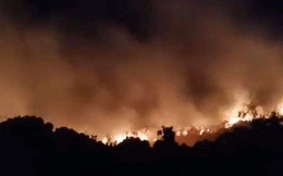 Cháy hơn 5.000m2 thực bì trên núi Sơn Trà