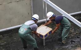 Lạ mắt phân hủy bùn sông Tô Lịch bằng đá núi lửa Nhật Bản
