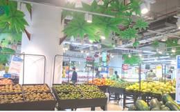 Xuất khẩu qua trung gian, nhiều nông sản Việt bị đội giá gần gấp 2 lần
