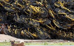 Câu chuyện buồn của Ofo, từ một startup trị giá 2 tỷ USD bây giờ chẳng còn lại gì ngoài những đống xe đạp hỏng chất cao như núi