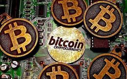 Bitcoin tăng giảm thất thường: Rủi ro vây bủa nhà đầu tư